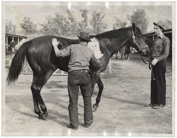 Seabiscuit Gets a Rubdown (1939)