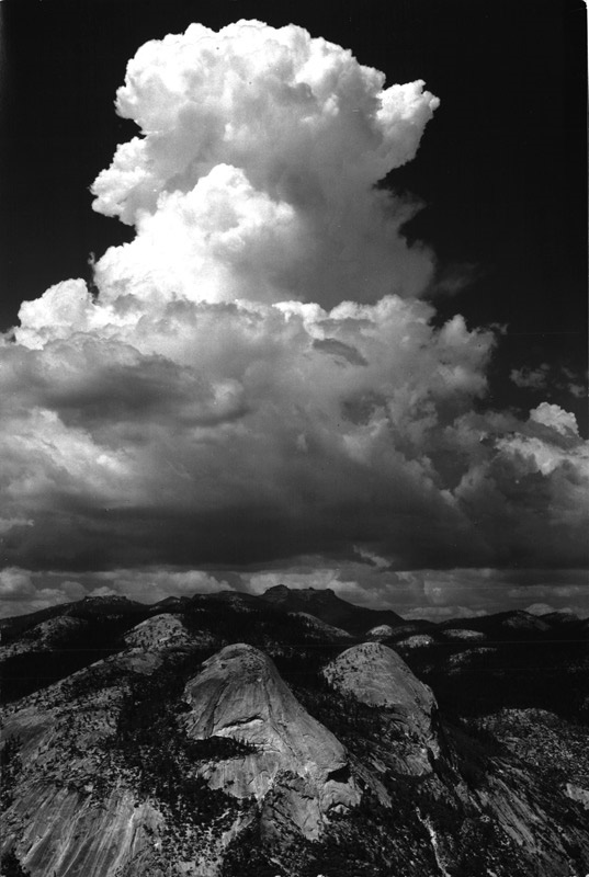Ansel Adams - June 2009 Catalogue