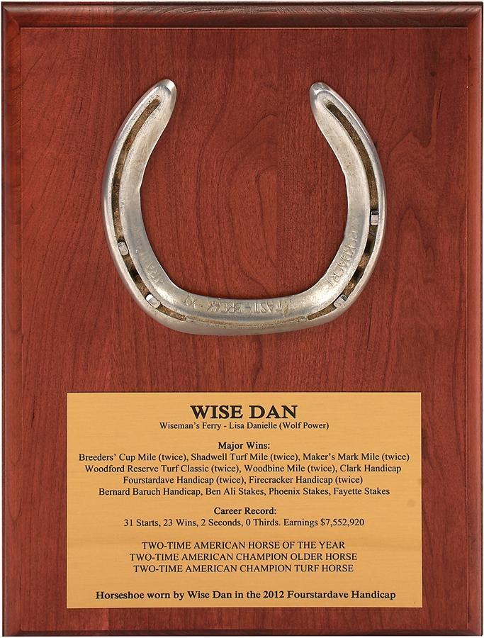 Wise Dan Raceworn Horseshoe (Mounted)