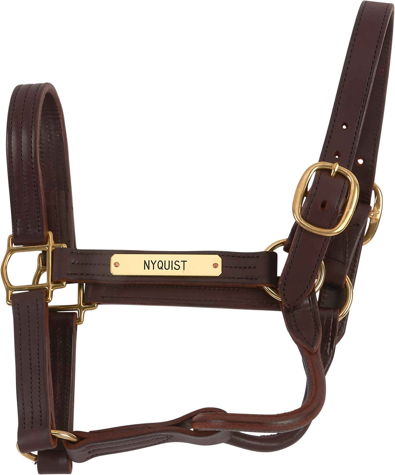 2016 Nyquist Worn Halter the Day After Preakness (Trainer LOA)